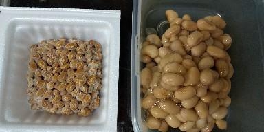 自家製納豆の作り方