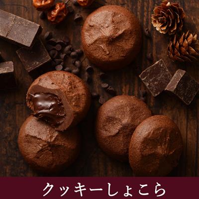 ココアで*焼きチョコクッキー