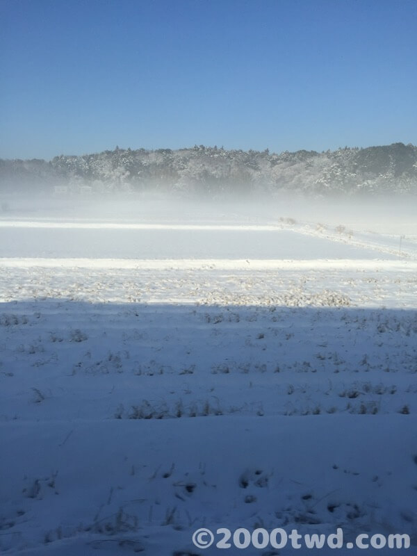 成田エクスプレスの車窓から見た雪景色
