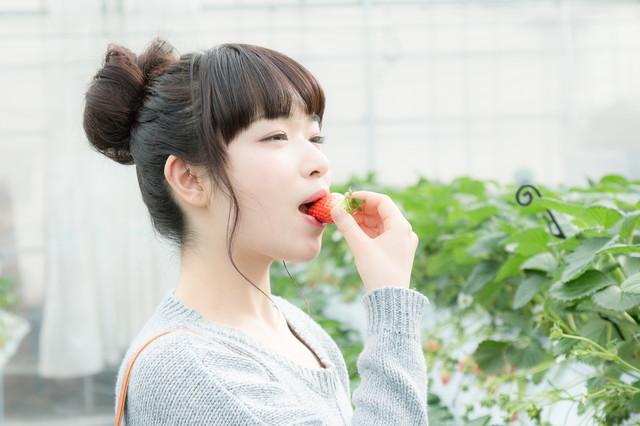 f:id:dai-diary:20180206055832j:plain