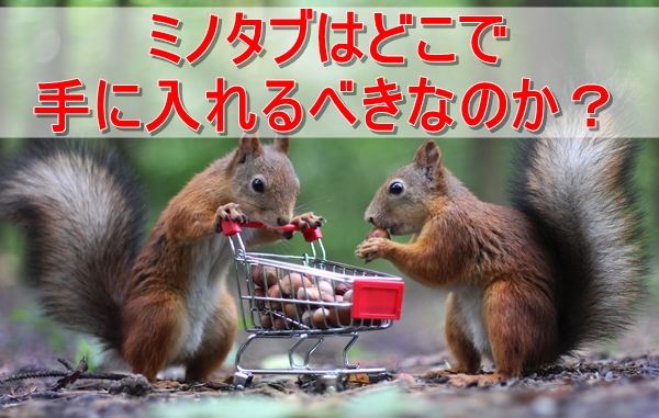 ミノキシジルタブレットをどこで買うか