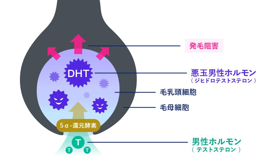 DHTの働き
