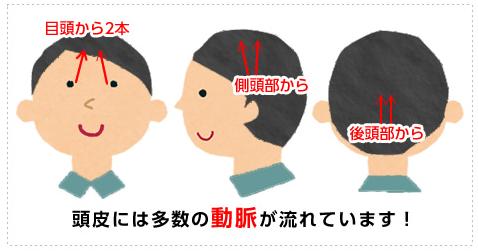 頭皮の血行