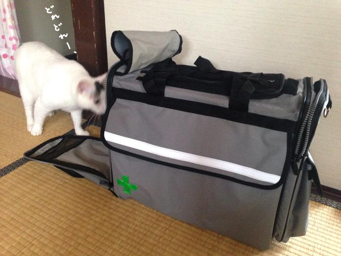 f:id:dai5ro-cat:20160912121341j:plain