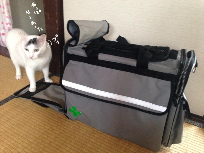 f:id:dai5ro-cat:20160912121344j:plain