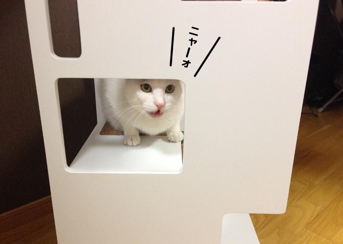 f:id:dai5ro-cat:20161012130352j:plain