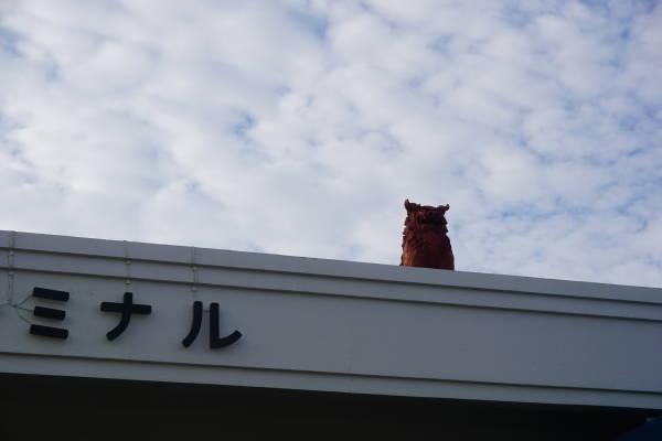 f:id:dai65527:20191117171747j:plain