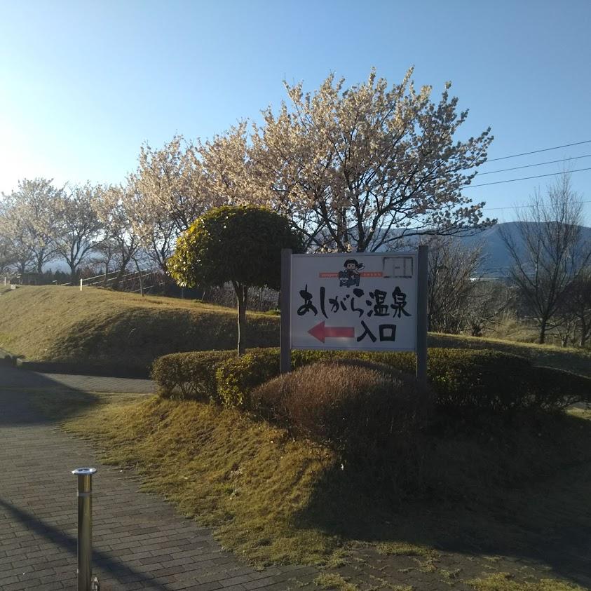 f:id:dai_shin0511:20200325125918j:plain