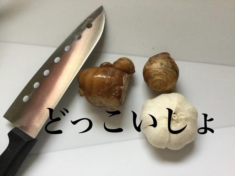 f:id:daichi6388:20161017212313j:plain