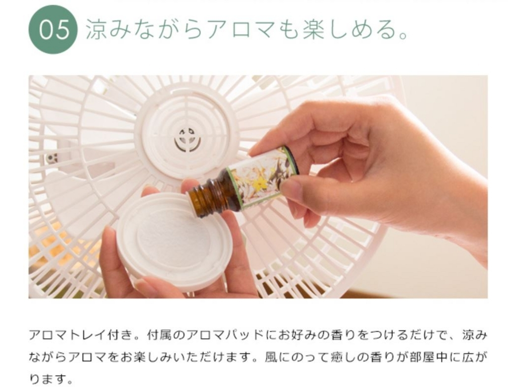 f:id:daichidesuyo:20170602114910j:plain