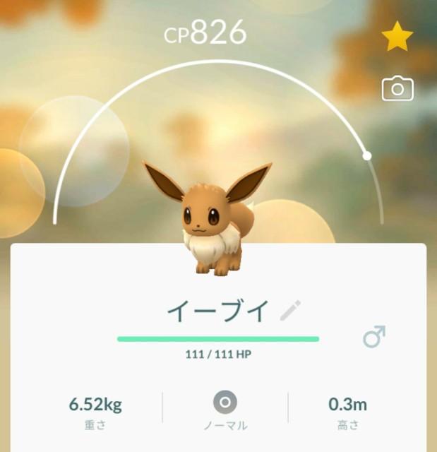 f:id:daichipokego777:20190814155307j:image