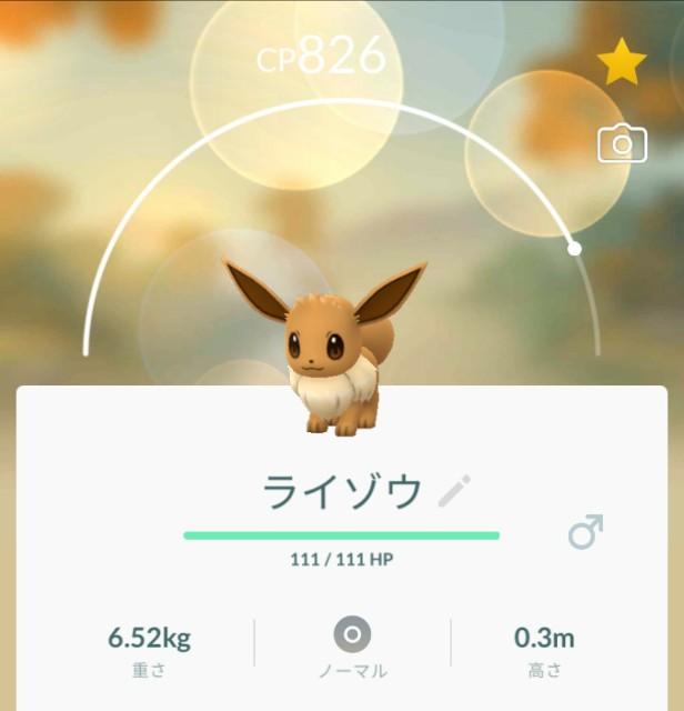 f:id:daichipokego777:20190814160451j:image