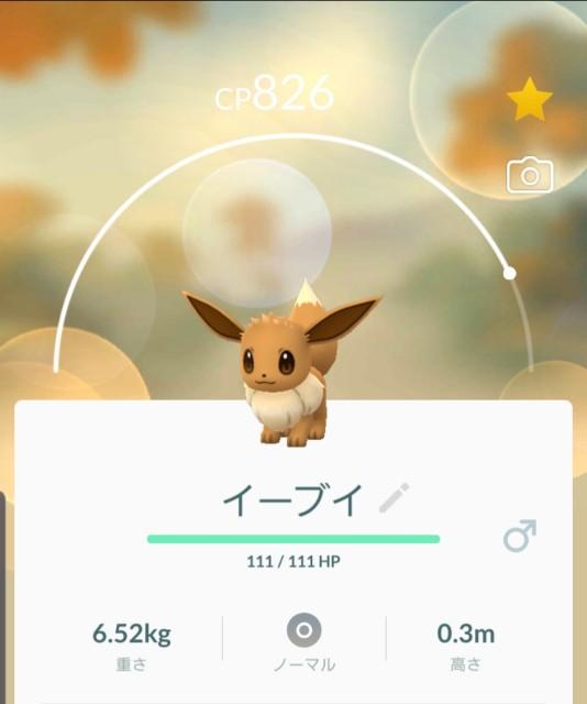 f:id:daichipokego777:20191012101911j:plain