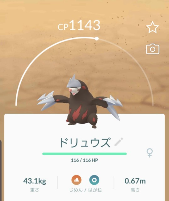 f:id:daichipokego777:20191015002627j:plain