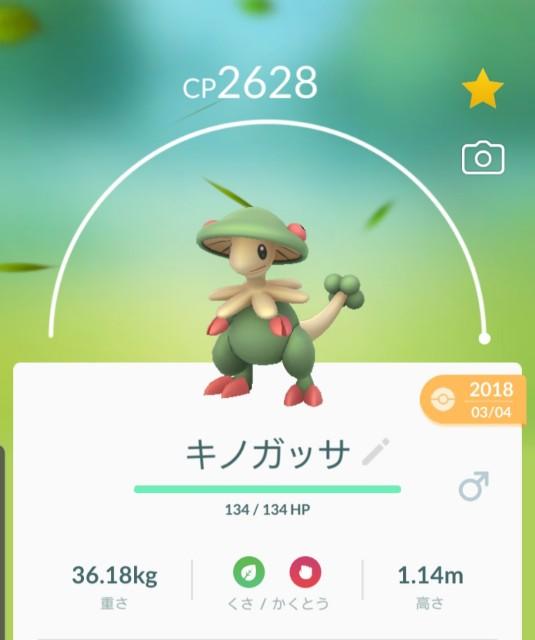 f:id:daichipokego777:20191015090800j:plain