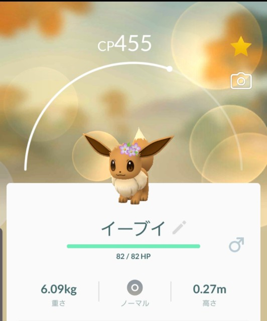 f:id:daichipokego777:20191017105527j:plain