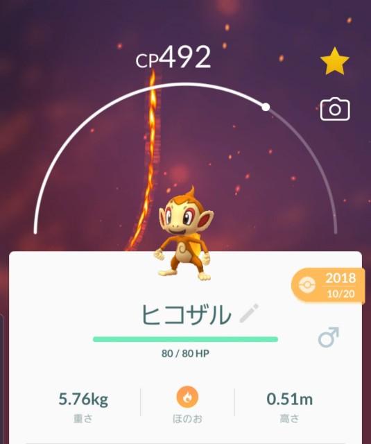 f:id:daichipokego777:20191017141724j:plain