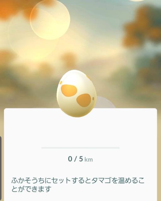 f:id:daichipokego777:20191017213906j:plain
