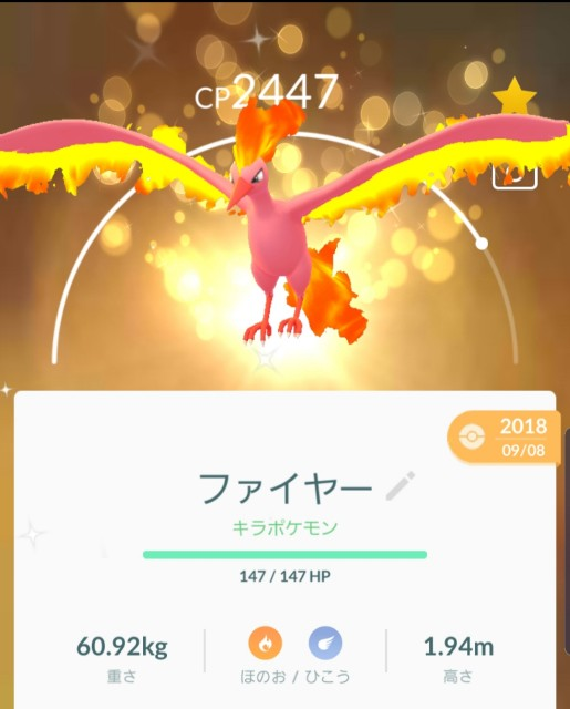 f:id:daichipokego777:20191102222351j:plain