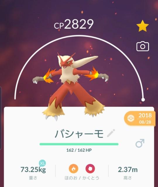 f:id:daichipokego777:20191209103947j:plain