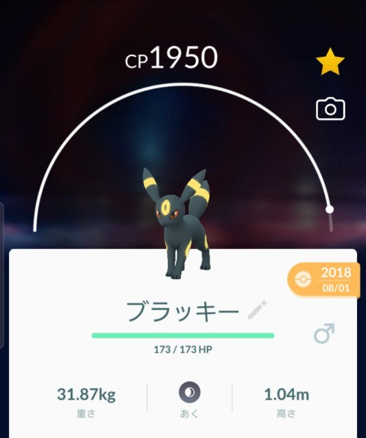 f:id:daichipokego777:20191209104241j:plain