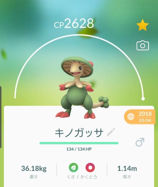 f:id:daichipokego777:20191209114918j:plain