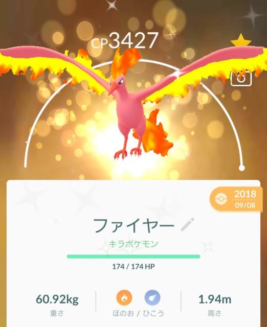 f:id:daichipokego777:20191213124704j:plain