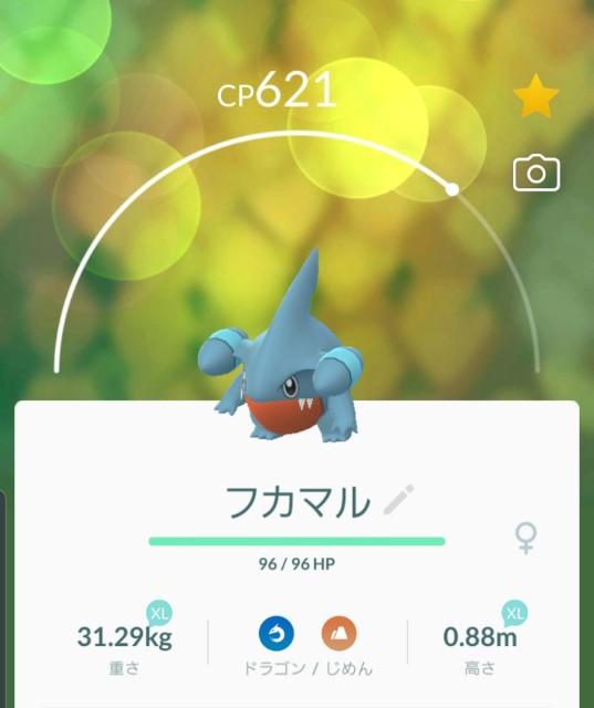 f:id:daichipokego777:20191217145006j:plain