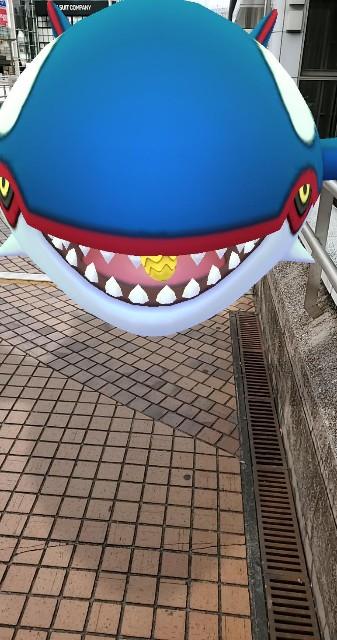 f:id:daichipokego777:20191226083622j:plain