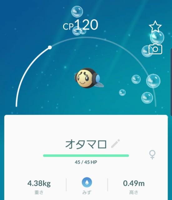 f:id:daichipokego777:20200114155054j:plain