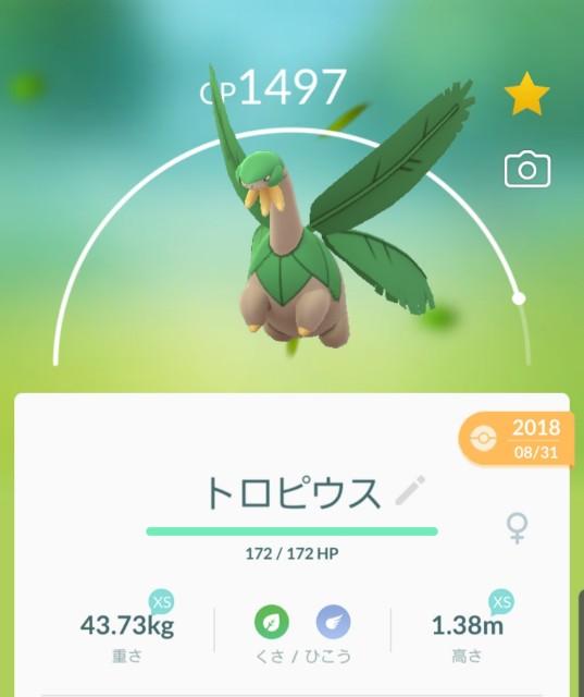 f:id:daichipokego777:20200129103552j:image