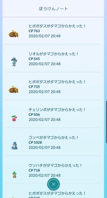 f:id:daichipokego777:20200209093228j:image