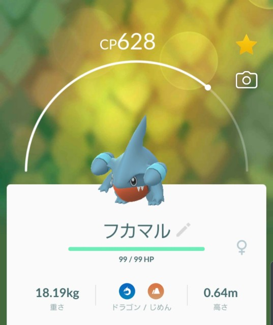 f:id:daichipokego777:20200212121934j:image