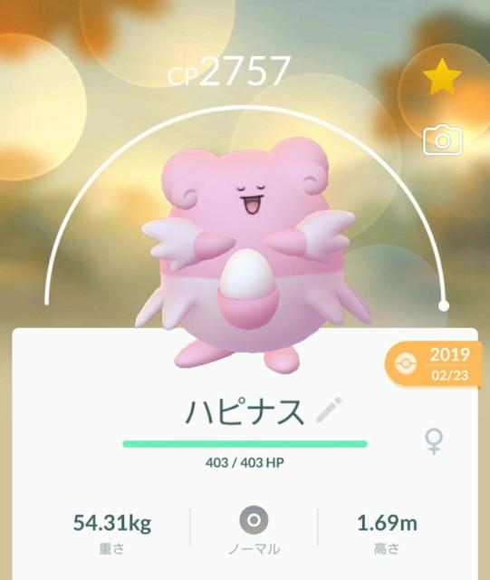 f:id:daichipokego777:20200225112605j:image
