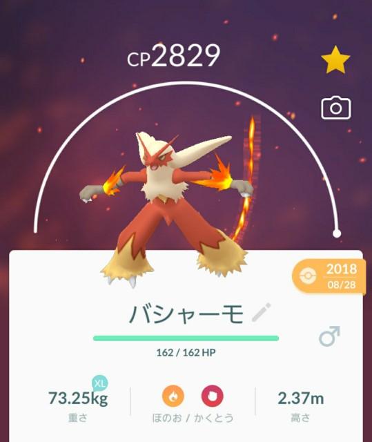 f:id:daichipokego777:20200316164302j:image