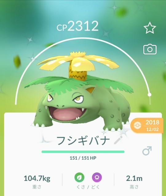 f:id:daichipokego777:20200415182523j:image