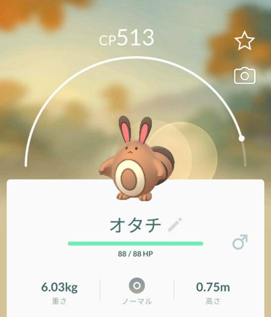 f:id:daichipokego777:20200416115546j:image