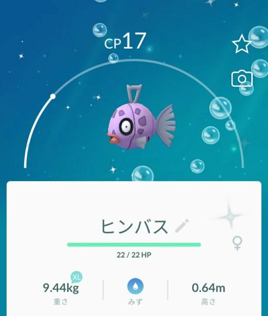 f:id:daichipokego777:20200422104843j:image