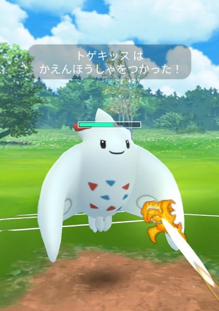 f:id:daichipokego777:20200510154437j:image