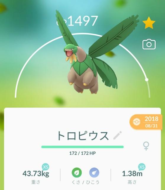 f:id:daichipokego777:20200514190729j:image