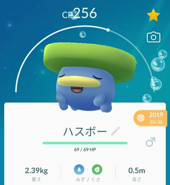 f:id:daichipokego777:20200518102547j:image