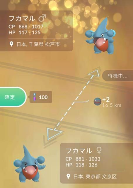 f:id:daichipokego777:20200611113809j:image