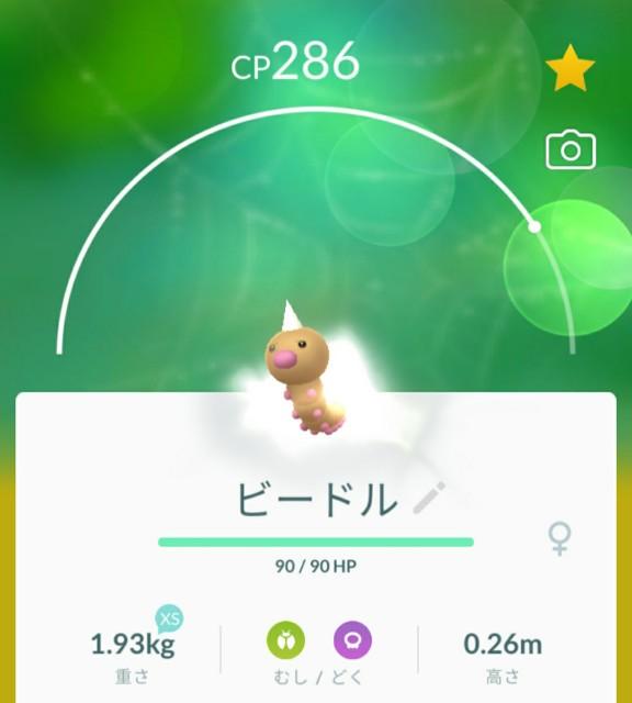 f:id:daichipokego777:20200612104014j:image