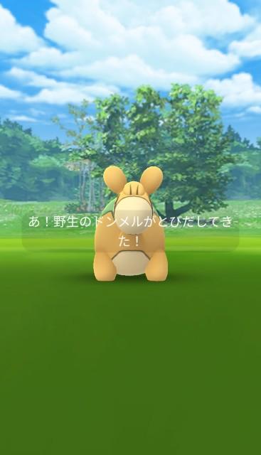 f:id:daichipokego777:20200616235222j:image