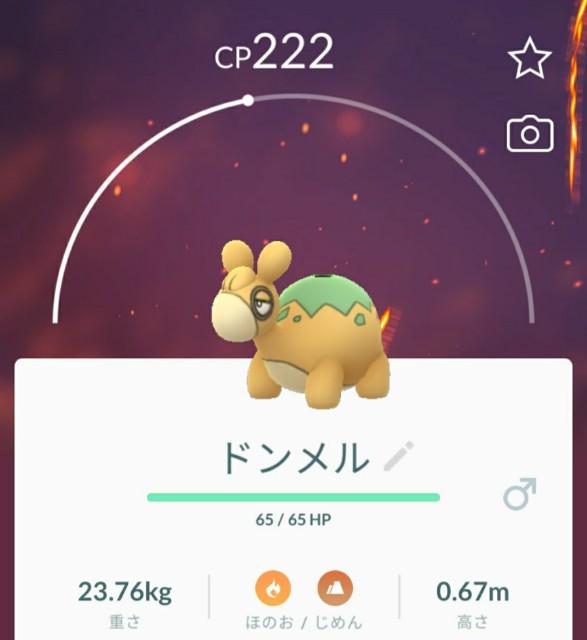 f:id:daichipokego777:20200617082657j:image