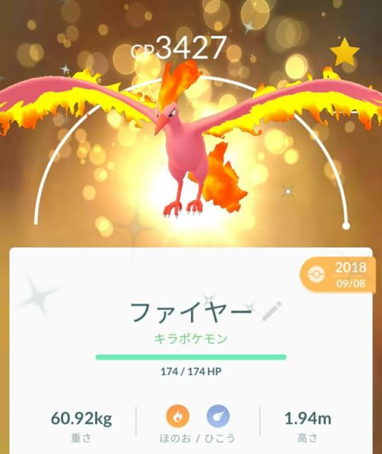 f:id:daichipokego777:20200804101329j:image