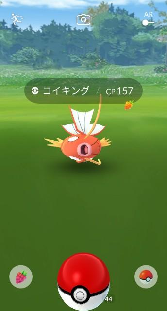f:id:daichipokego777:20200809125507j:image