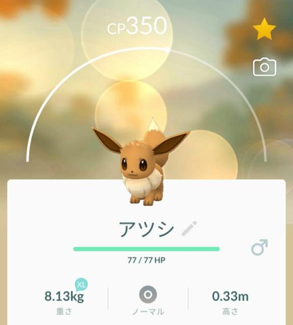 f:id:daichipokego777:20200814184852j:image