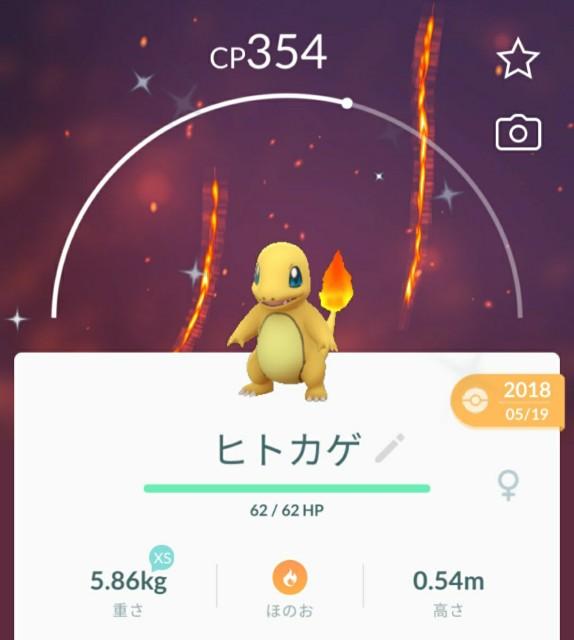 f:id:daichipokego777:20200818110213j:image
