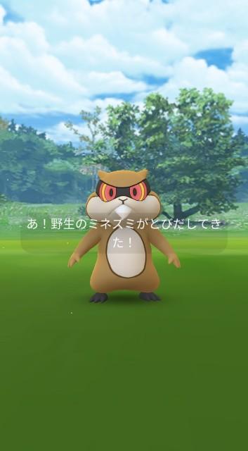 f:id:daichipokego777:20201108150134j:image
